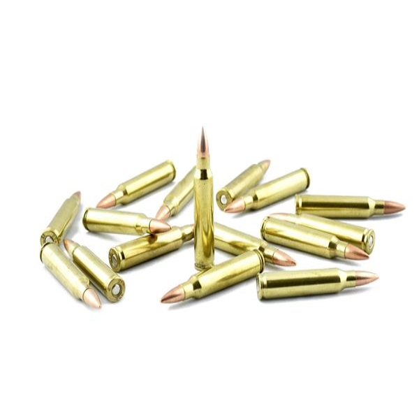 55gr. .223 Bulk In Stock NOW !